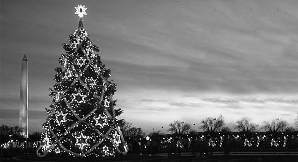 National Christmas Tree 1983