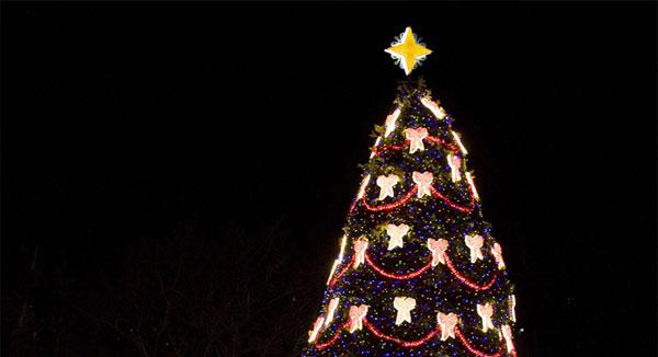 Event History Timeline National Christmas Tree Lighting
