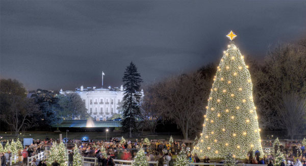 2008 - Event History & Timeline National Christmas Tree Lighting
