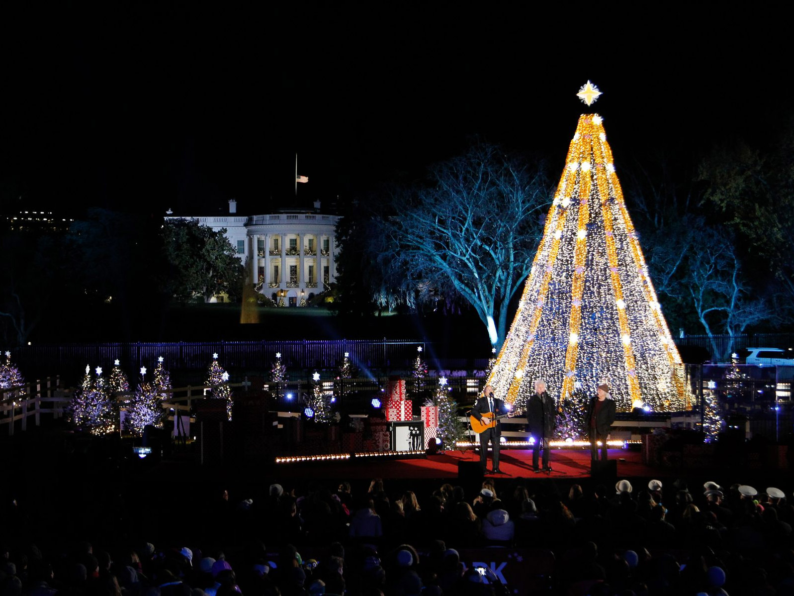 tree lighting news