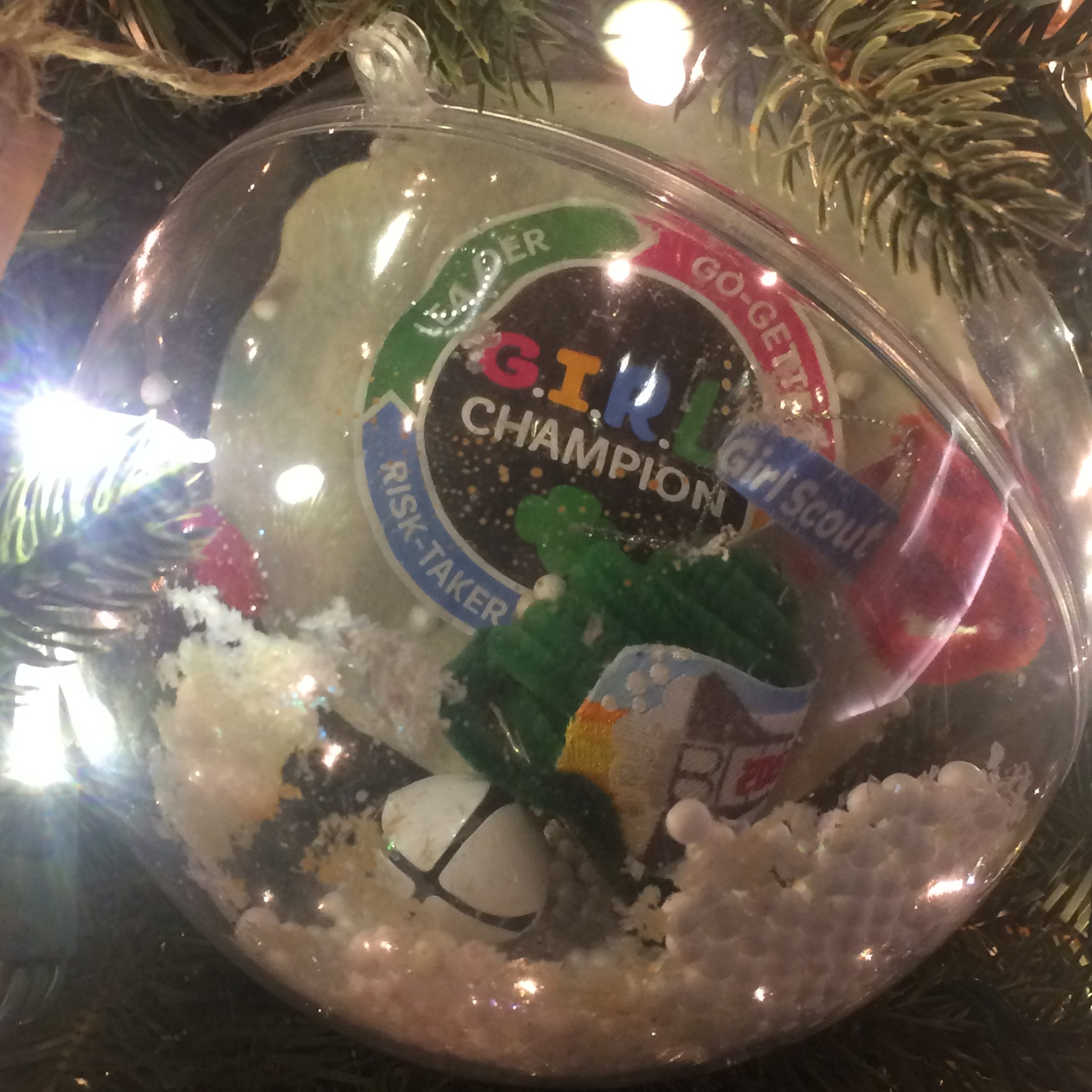 America Celebrates: Ornaments from Across the USA in 2017 | National ...
