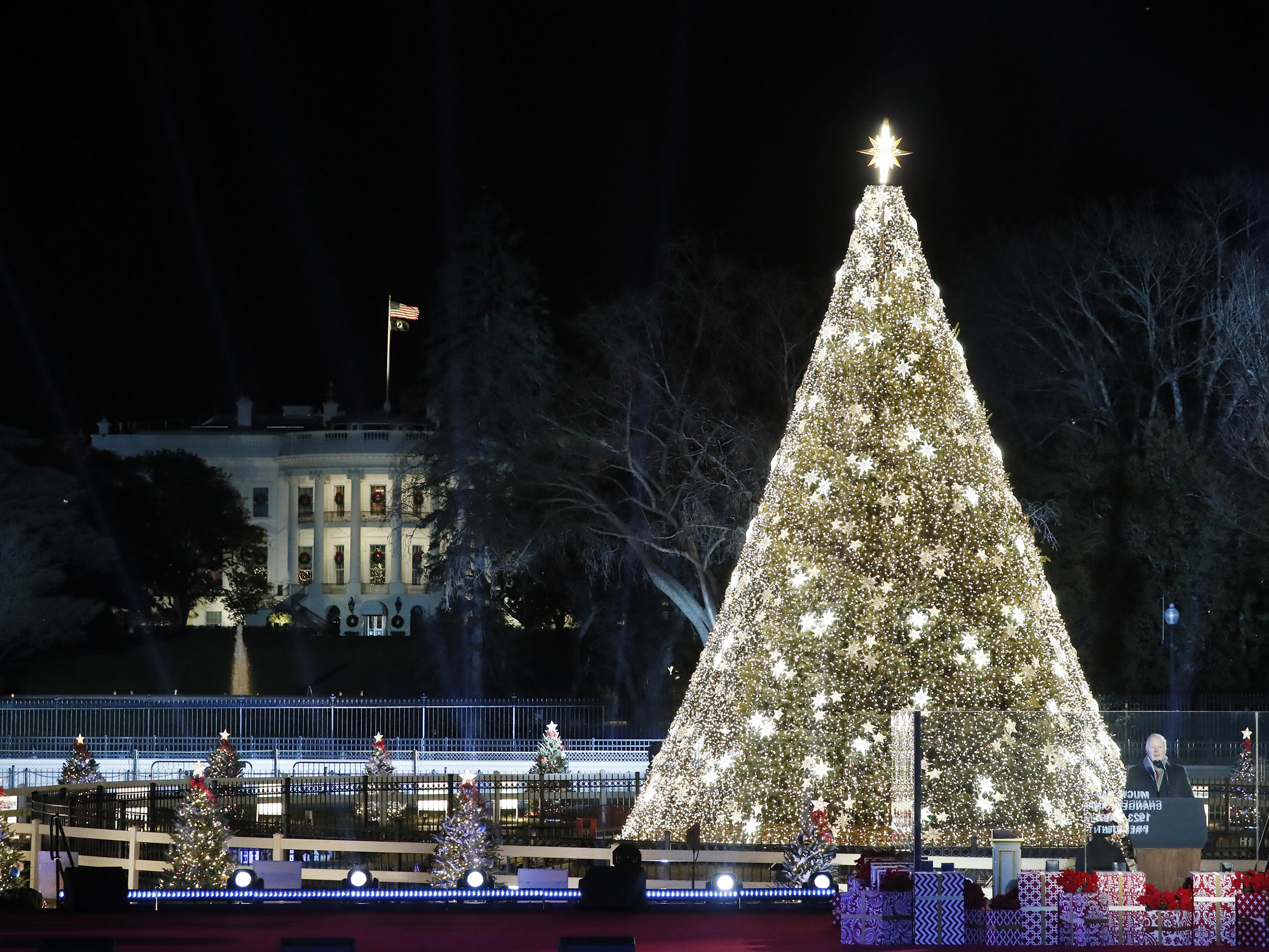 Home Page   National Christmas Tree Lighting