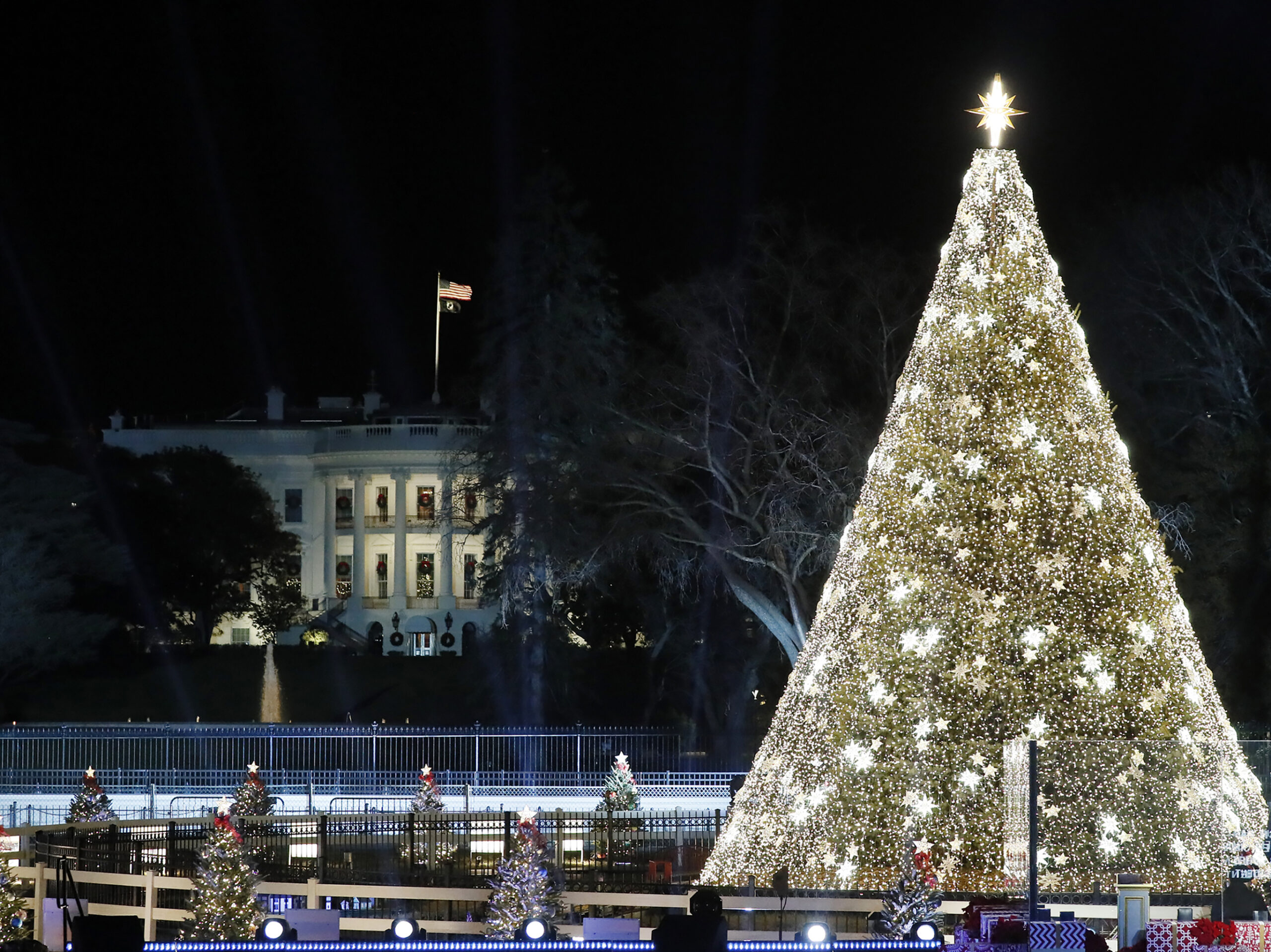 2019 National Christmas Tree, illuminated at night, with the White House in the background.